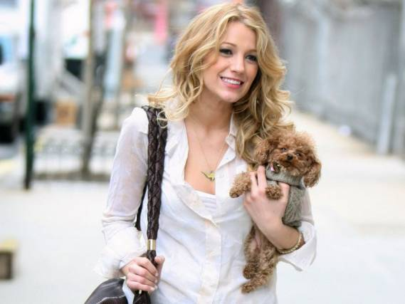 Actress Blake Lively owns a mixed breed dog named Penny.
