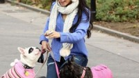 Vanessa Hudgens with her french bulldogs