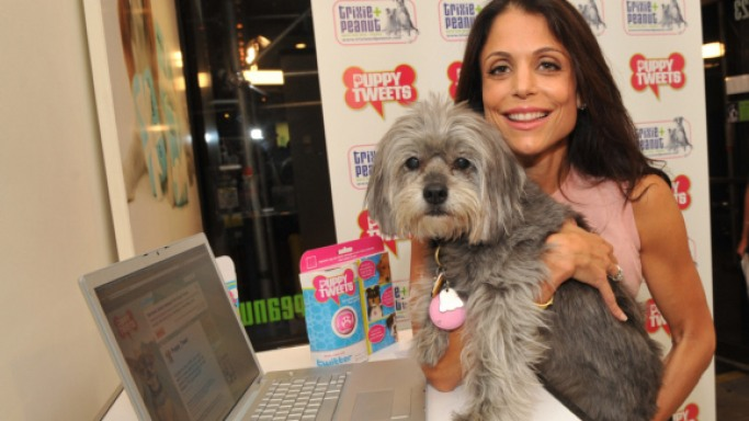 Bethenny Frankel's Dog