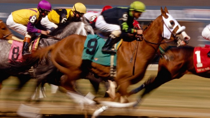 Horse Breeding and Racing